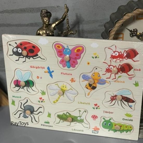 Puzzle incastru Insecte din lemn in Limba Romana