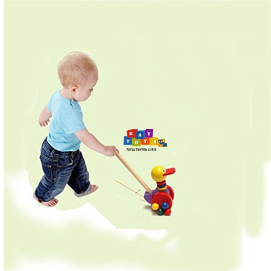 Jucarie-de-impins-pentru-copii-animalute-din-lemn5