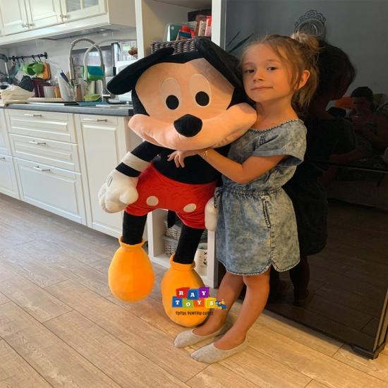 Minnie-si-Mickey-Mouse-plus-Mare-Disney1