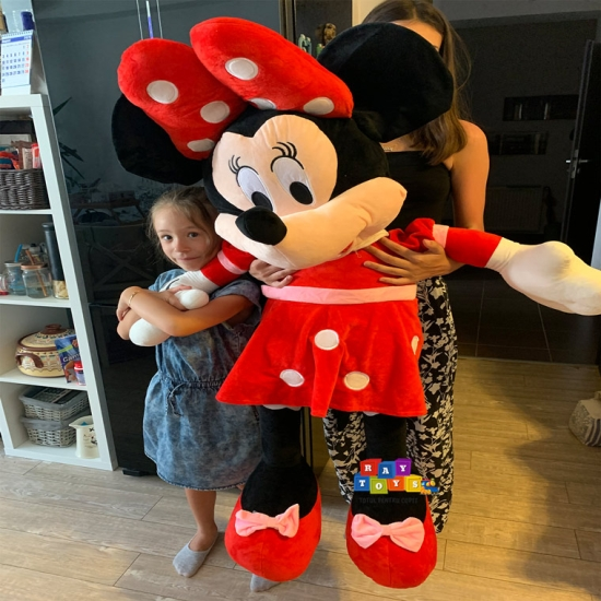 Minnie-si-Mickey-Mouse-plus-Mare-Disney2