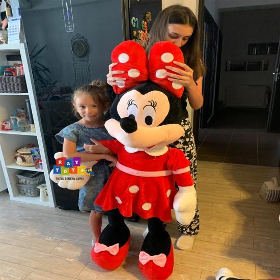 Minnie-si-Mickey-Mouse-plus-Mare-Disney3