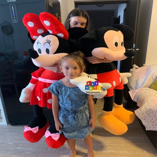 Minnie-si-Mickey-Mouse-plus-Mare-Disney4