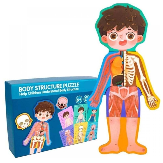 Puzzle Corpul uman Jucarie Anatomia despre Baiat din lemn