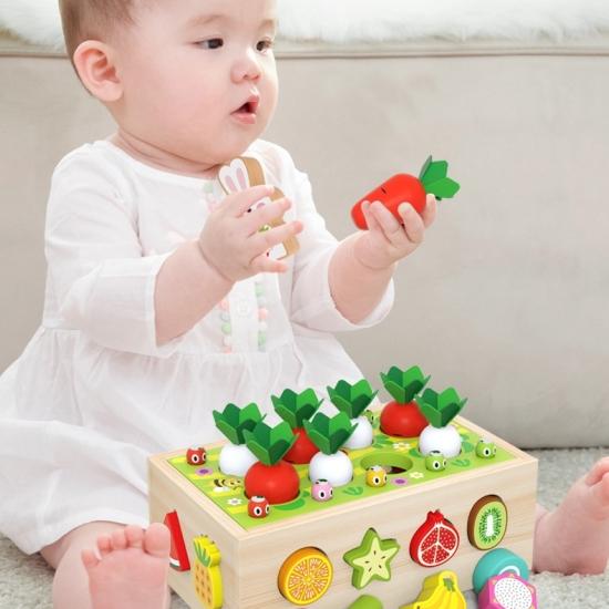 Jucarie cu roti Cutia de pescuit Puzzle fructe legume